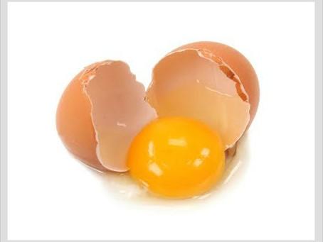 Scrambled Eggs in the Garage