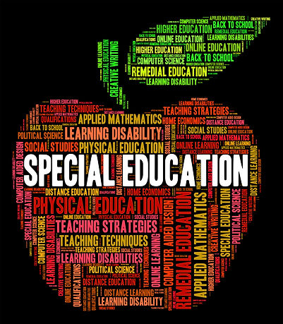"The words ""Special Education"" in white is surrounded by dozens of related words in color, all of which form the shape of an apple."