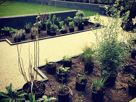 SW14 Family garden nears completion