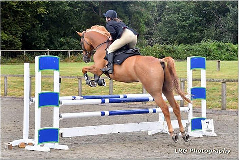 sussex animal alice jump.jpg