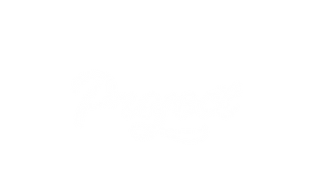 THE CHILLI PROJECT (project).png