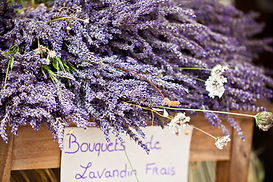 Lavender bunches selling in an outdoor f