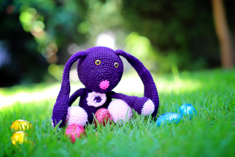 Purple Hare