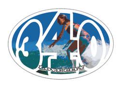 surfer girl series