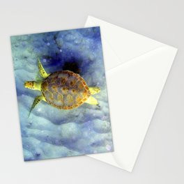 Turtle Dive Cards