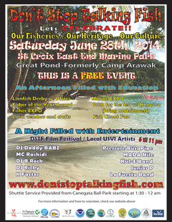 DSTF Flyer #1