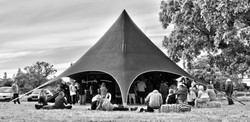 mashup tent