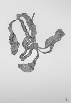 21 x 29,7 cm - pen