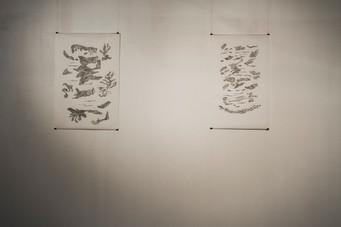 80 x 100 cm ; 75 x 100 cm - pen