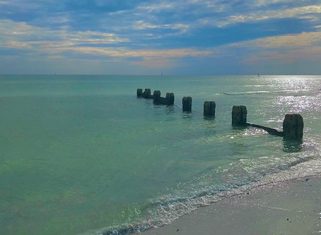 A Guide to Honeymoon Island State Park