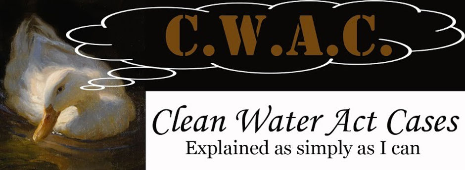 CWAC banner_edited.jpg