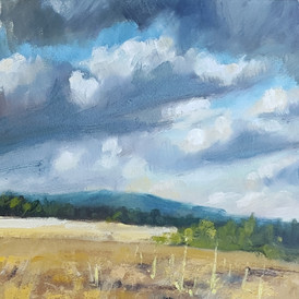 """""""September Sky with Mullein"""" (north Estes Park)"""