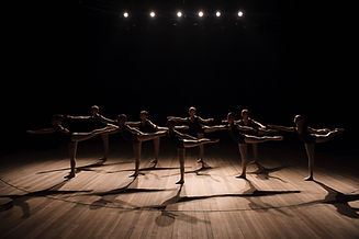 A choreographed dance of a group of grac