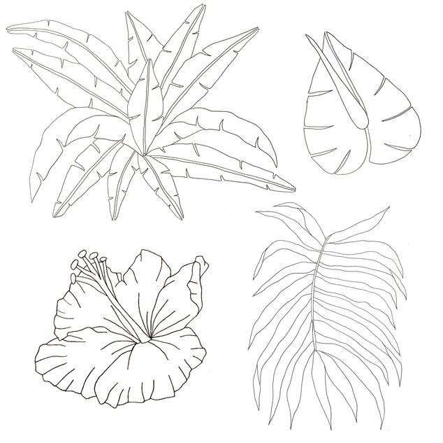 Initial drawings