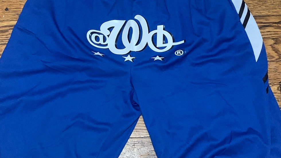The INTL AWOL OVERLAY SHORTS