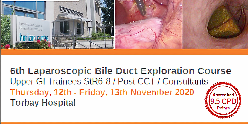 6th Laparoscopic Bile Duct Exploration Course