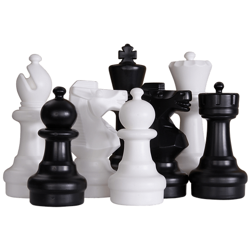CHESS CLUB for BEGINNERS