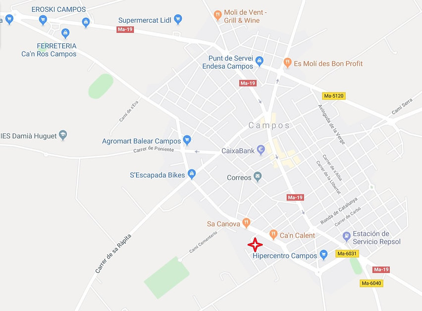 LZ Piso Neuvo Lageplan 2019-11-20.jpg