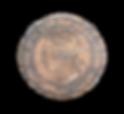 HavasuGOLDCOINDSC08225.png