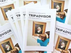 Art Criticism of TripAdvisor