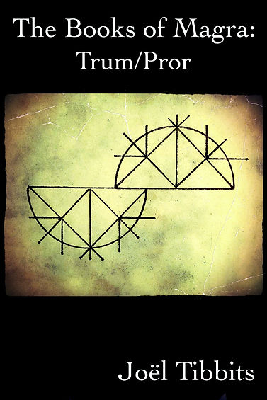 Trum-Pror site book cover.jpg