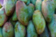 Allemansrätten.online mango