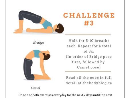 Fix Your Posture Challenge #3