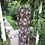 Thumbnail: 1970s Maxi Dress by Jean Varon