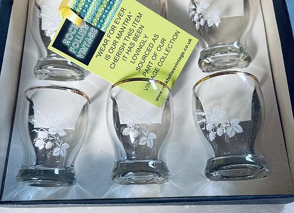 Vintage Shot Glass Boxed Set