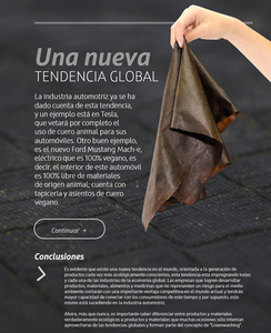 Polybion.mx is a consumer biotech company developing leather from waste.