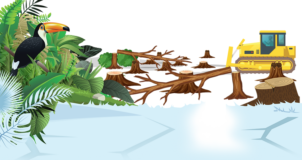 forest3.png
