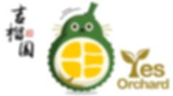 Yes_website logo-01.jpg