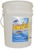ISS-Punch-Plus-PAILsml.jpg