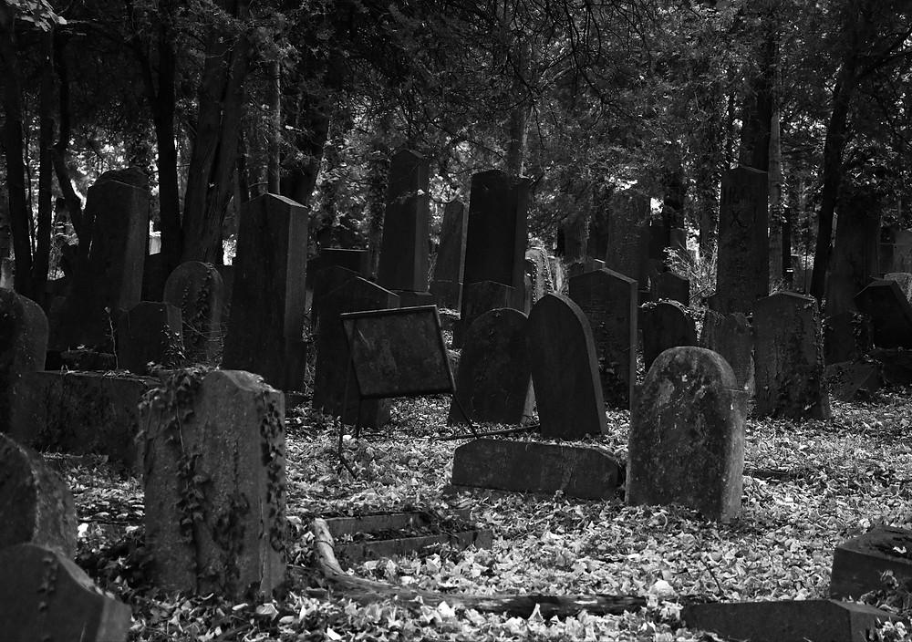 Alter Teil des Wiener Zentralfriedhof