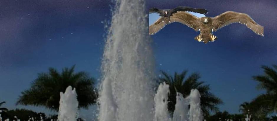 7 - Birdemic