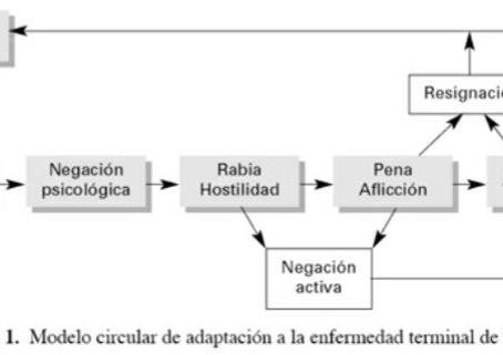 Adaptación psicológica a la enfermedad