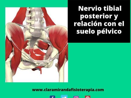 Nervio tibial posterior y su relación con el suelo pélvico.