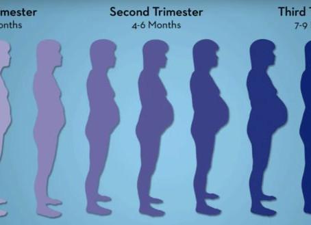 ¿Qué papel tiene la fisioterapia en el embarazo?