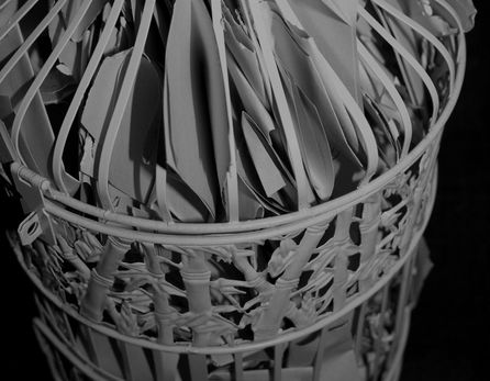 BW Bird cage.jpg