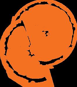 blood orange transp 2.png