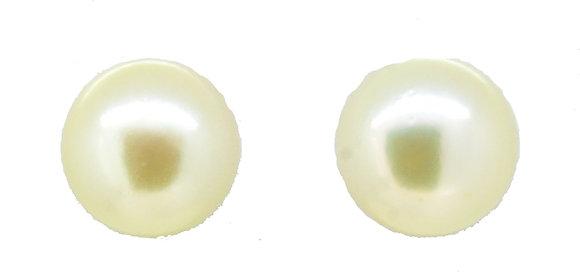 9ct Yellow Gold Cream Peal Studs