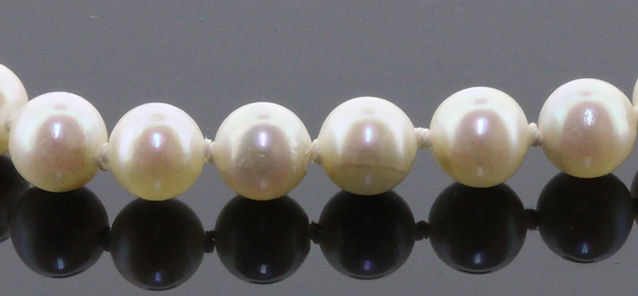 5.5mm-6mm Akoya cultured pearl necklace