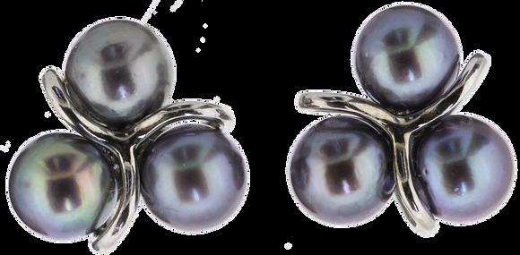 9ct White Gold Black Pearl Earrings