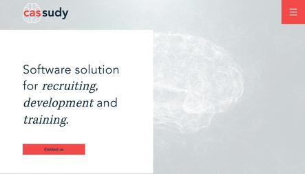 cassudy - Software Solution