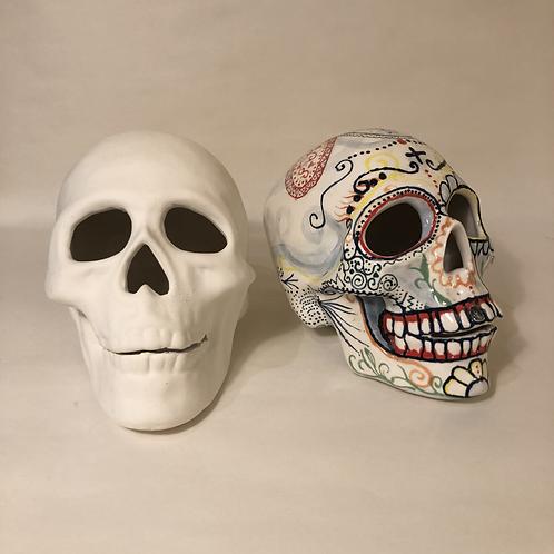 Skull - 13cm (h) 19.5cm (l)