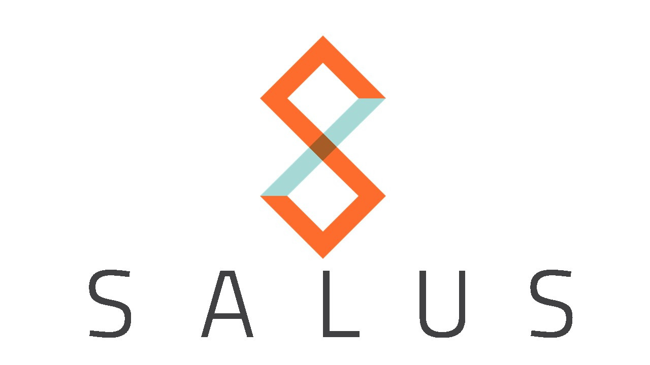 Risk Assessment + Audit | Salus