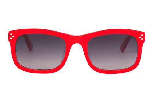 Benjamin C137 Sunglasses Polarised