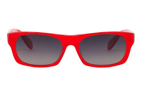 Borgo C137 Sunglasses Polarised