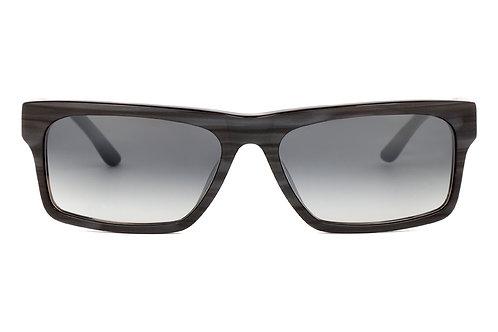 Swarve Y16 Sunglasses