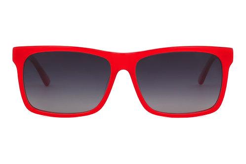 Rad C137 Polarised Sunglasses